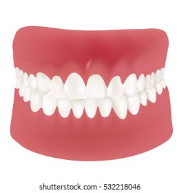 Jaw vector isolated illustration