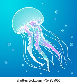 jelly fish vector illustration
