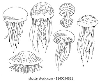 Jellyfish graphic set black white isolated sketch illustration vector