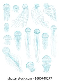 Jellyfish isolated vector elegance silhouette illustration set. Blue hand drawn vintage sea collection. Design elements