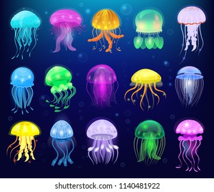 Jellyfish vector ocean jelly-fish or sea-jelly and underwater nettle-fish or medusae illustration set of exotic jellylike glowing medusa or fish in sea isolated on background