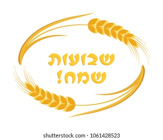Jewish holiday of Shavuot, ears wheat oval frame, greeting inscription hebrew - Happy Shavuot, isolated on white background