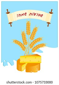 Jewish holiday of Shavuot, greeting card with cheese, wheat ears and milk, symbolic foods of Shavuot, greeting inscription hebrew on scroll - Happy Shavuot