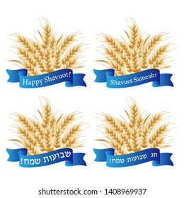 Jewish holiday of Shavuot, wheat ears, greeting inscription hebrew on scroll - Happy Shavuot - Vector