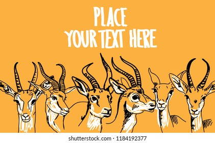 Jeyran. African animals. Background with antelope. Drawing by hand, place for text.
