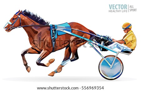 Jockey And Horse Champion Racing Hippodrome Steed Coming First To Finish