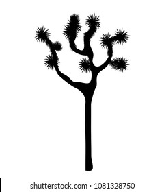 Joshua tree vector isolated on white background. Desigh element with Yucca brevifolia slim and black silhouette.