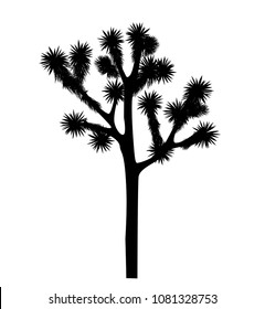 Joshua tree vector isolated on white background. Desigh element with Yucca brevifolia black silhouette.