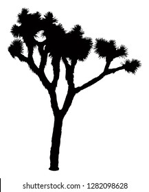 Joshua Tree Vector, Silhouette of Joshua Tree, Desert Plant Illustration, National Park Symbol, Cacti, Outline, Route 66 Icon, Arizona Landscape, Hiking & Camping, Outdoor Activities.