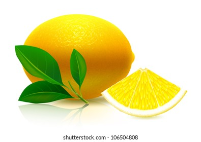 Juicy LEMON. Complex VECTOR illustration, painted with love to details.