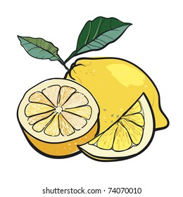 Juicy lemon with green leaves. A sketch of a fresh citrus