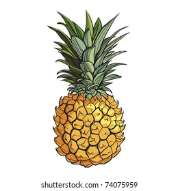 Juicy pineapple. Fresh pineapple. Tasty and healthy food. Tropical fruit