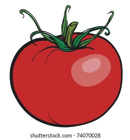 Juicy red tomato. A fresh vegetable
