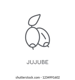 Jujube linear icon. Modern outline Jujube logo concept on white background from Fruits and vegetables collection. Suitable for use on web apps, mobile apps and print media.
