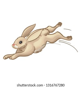 Jumping Rabbit Vector Animal Illustration