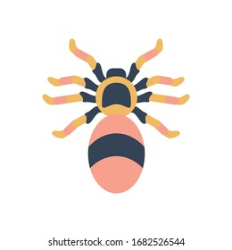 jumping spider icon over white background, flat style, vector illustration