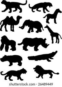 Jungle animal silhouettes.