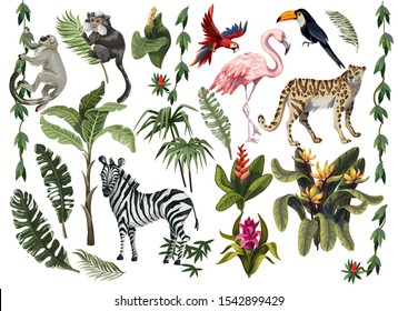 Jungle animals, flowers and trees isolated. Vector.