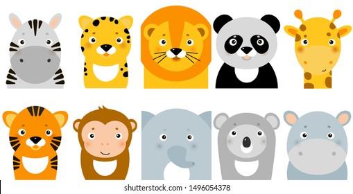 jungle animals, vector animal faces, safari flat icons. Zoo muzzles