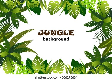 jungle. background. vector illustration.