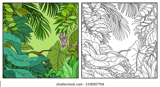Jungle black color and contour line drawing for coloring on a white background
