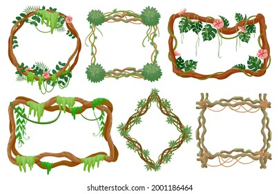 Jungle liana frames. Rainforest branches with moss, vines tropical leaves and exotic flowers round and square frame vector set. Frame environment, foliage wildlife tropic vegetation illustration