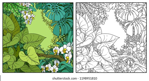 Jungle with lianas color and black contour line drawing for coloring on a white background