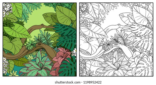 Jungle with overgrown lake color and black contour line drawing for coloring on a white background