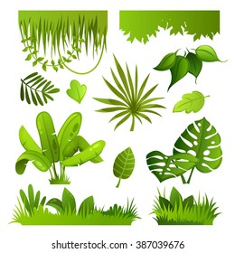 jungle plants. set. vector illustration
