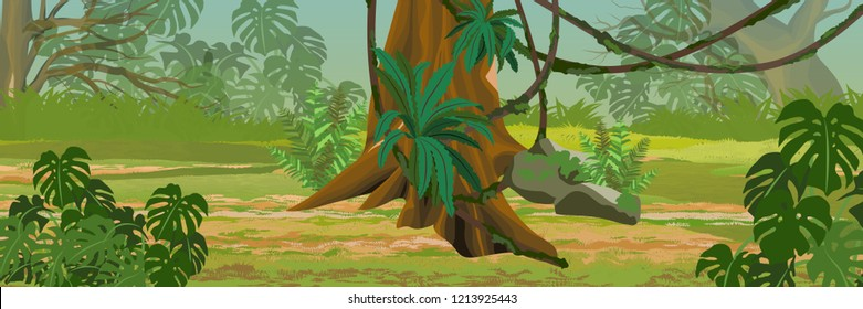 Jungle. A tropical forest. Rainforests of Amazonia. Tree, epiphytic ferns, creepers and monsteras. Realistic Vector Landscape