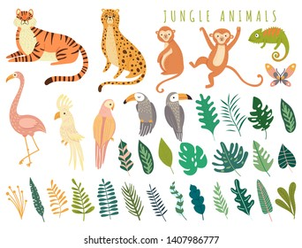 Jungle wild animal and exotic bird with exotic tropical leaves. Set with Isolated vector of tiger, monkey, leopard, chameleon, flamingos, parrot, cockatoo, toucan. Cartoon illustration