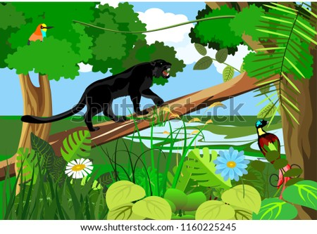 Jungle Wildlife Nature Landscape Background Scene Stock Vector