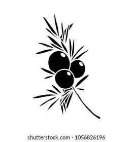 juniper doodle icon