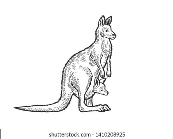 Kangaroo with baby cub in kangaroo pouch animal sketch engraving vector illustration. Scratch board style imitation. Black and white hand drawn image.