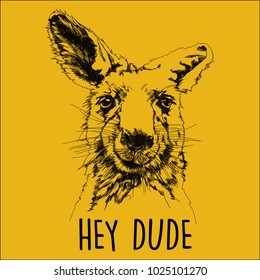 Kangaroo head vector illustration hand drawn on yellow background. Combined with hey dude letters