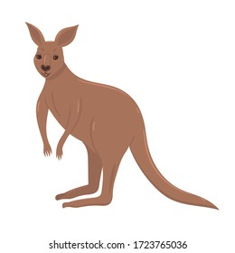 Kangaroo isolated on a white background. Vector graphics.