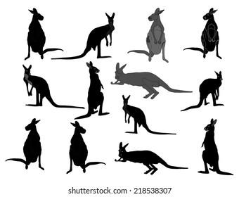 kangaroo vector silhouette set, isolated on white background. Kangaroo family illustration.