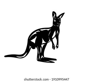 kangaroos on a white background. Isolated drawing of a wallaby. Vector illustration
