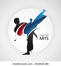 karate kick splash silhouette martial arts