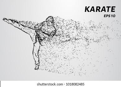 Karate of particles. Karate man in a kimono kick leg.