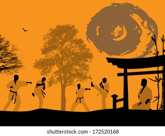 Karate in the sunset background, vector illustration
