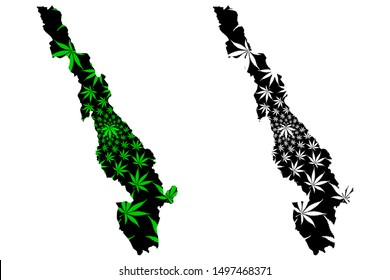 Kayin State (Administrative divisions of Myanmar, Republic of the Union of Myanmar, Burma) map is designed cannabis leaf green and black. State map made of marijuana (marihuana,THC) foliage