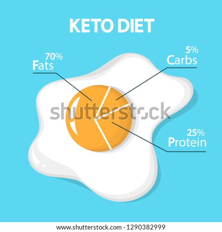 keto diet concept egg diagram showing stock vector (royalty free  egg diagram showing percentage of fats, carbs and protein low