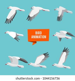 Key frames of animation flying bird. Animation bird fly, animal wildlife fly loop beak, vector illustration