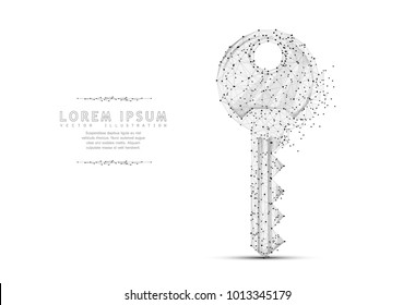 Key. Polygonal wireframe mesh art with crumbled edge on white background with dots. Security, success, solution concept illustration or background