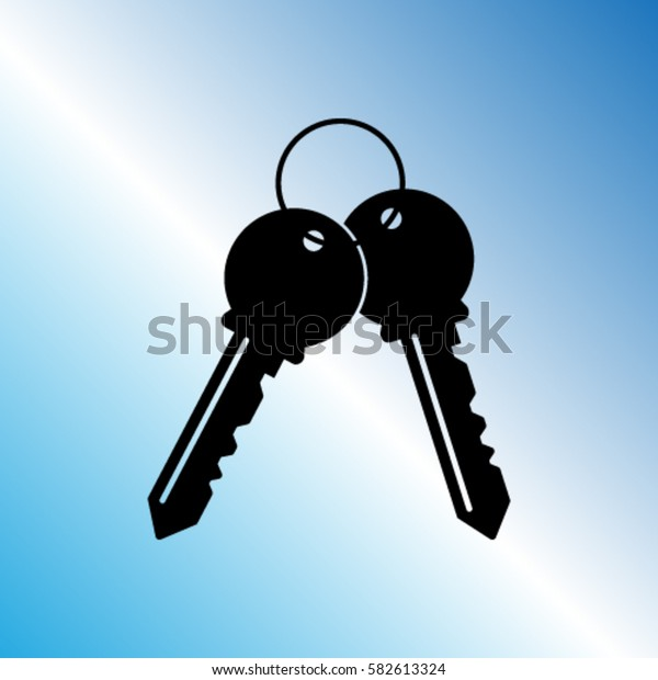 Keys vector icon