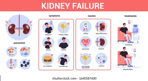 Kidney failure infographic. Symptoms, causes, prevention and treatment. Idea of medical treatment. Urology, internal human organ. Healthy body. Vector illustration in cartoon style