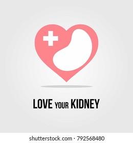 Kidney vector illustration, human kidney logo design