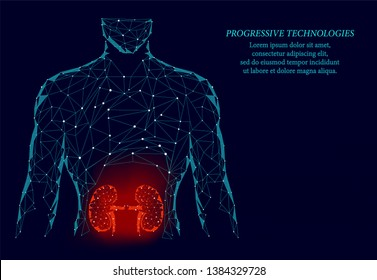 Kidneys internal organ men silhouette 3d geometric model. Urology system medicine treatment. Future science technology.Red triangles polygonal 3D render shape.