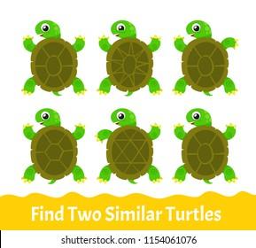 Kids Learning Exercises. Find Two Similar Cartoon Turtles. Education Game for Children. Vector Illustration